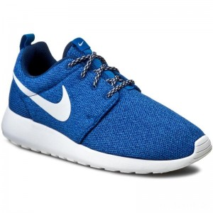 Nike Schuhe Roshe Run 844994 400 Coastal Blue/White/Blue Spark